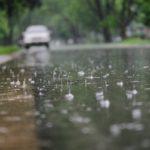 Rainfall expected